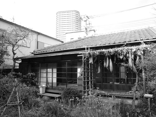 sanpo_UGUISU_02_04